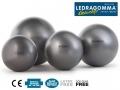 Гимнастический мяч LEDRAGOMMA Physioball MAXAFE