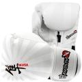 Боксерские перчатки HAYABUSA Ikusa 10 oz Boxing Gloves