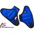 Отягощения фиксированные PROSOURCE Weighted Gloves пара