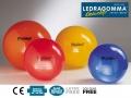 Гимнастический мяч LEDRAGOMMA Physioball STANDARD