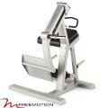 Ягодичные мышцы FREEMOTION F309