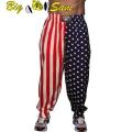 Мужские тренировочные штаны BIG SAM 827