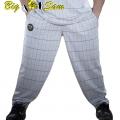 Мужские тренировочные штаны BIG SAM 1001