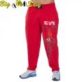 Мужские тренировочные штаны BIG SAM 1056