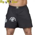 Мужские тренировочные шорты BIG SAM 1325