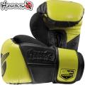 Боксерские перчатки HAYABUSA Tokushu Regenesis 12 oz BoxingGlove