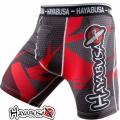 Компрессионные шорты HAYABUSA Metaru 47 Silver Shorts