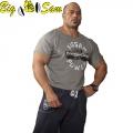 Мужская тренировочная топ-футболка BIG SAM 3143