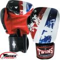 Боксерские перчатки TWINS FBGV-44TH