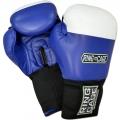 Перчатки боксерские для соревнований RING TO CAGE RTC-2112