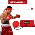 Скоростной мяч-тренажер Файтбол POAGL SPEED BOXING BALL