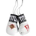 Сувенирные боксерские перчатки TITLE TB-i1021
