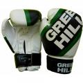 Боксерские перчатки GREEN HILL PASSION