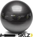 Мяч для фитнеса SKLZ  Ø65 см с насосом