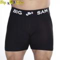 Шорты плотнообдегающие BIG SAM 1363