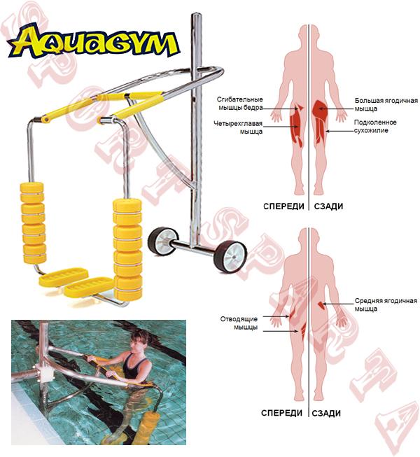 AquaStrider