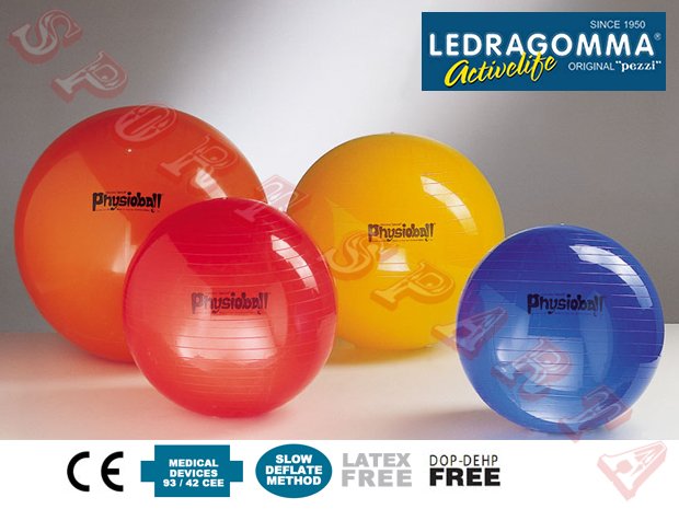 Physioball_STANDARD_02